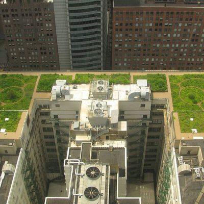 ¿Qué son los tejados verdes?