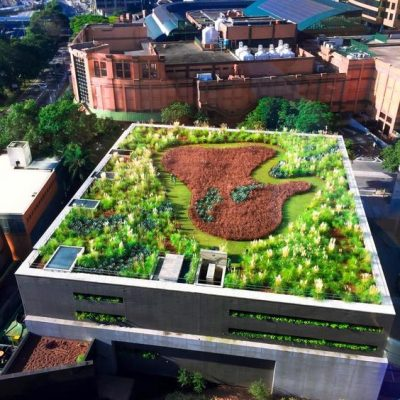 Sistemas de cubiertas verdes